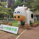 ペットの犬も一緒に楽しめる牧場「成田ゆめ牧場」に行きました!